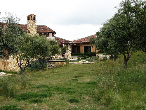 Olive trees frame an Italian-inspired garden. Photo by Seán A. O'Hara.
